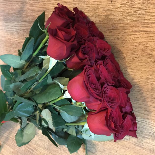 17 роз фридом