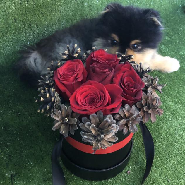 Шляпная коробка с розами и шишками