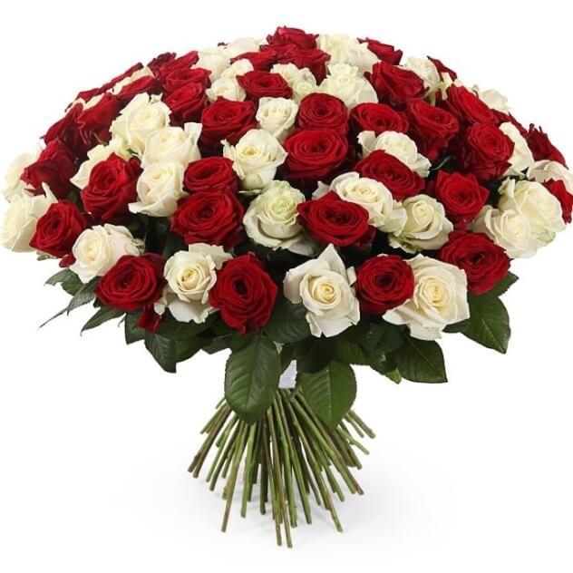 101 роза классический микс