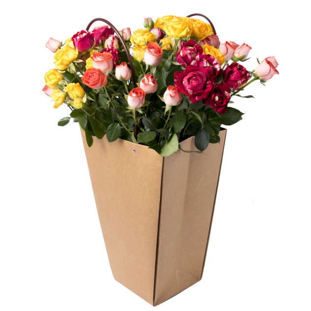 """Кустовые розы в пакете """"Дари добро"""""""