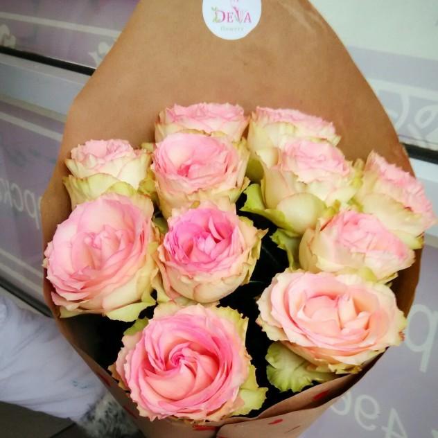 Нежная стойкая роза эсперанса