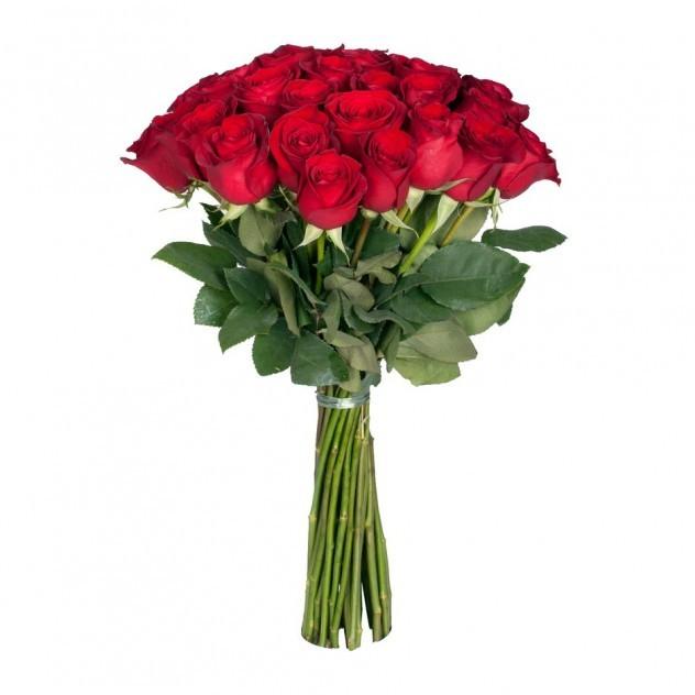 Букет из 25 элитных роз Фридом