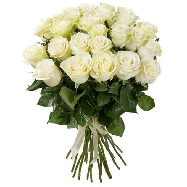 Букет из 25 белых роз премиум