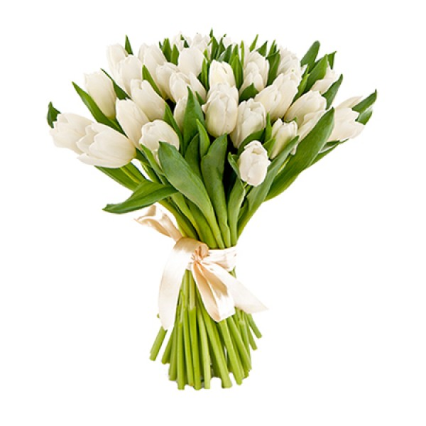 Букет из 7 белых тюльпанов